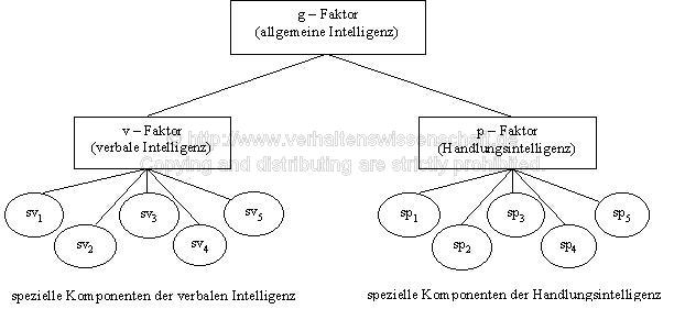 intelligenzquotient tabelle kinder